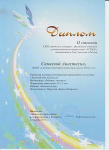 Зелёный пояс Кузбасса Синяева 2-2017